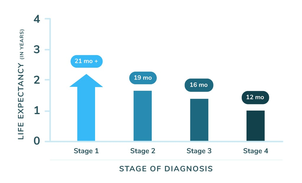 Mesothelioma Life Expectancy by Stage Chart